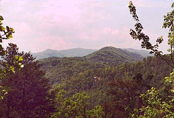 View of Great Smoky Mountains at Wildwood Cabin